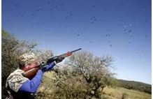 dove hunting areas california and oregon