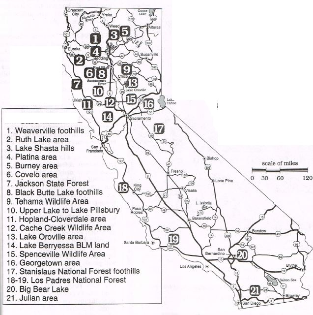 california turkey hunting map,clubs,public land,ranches